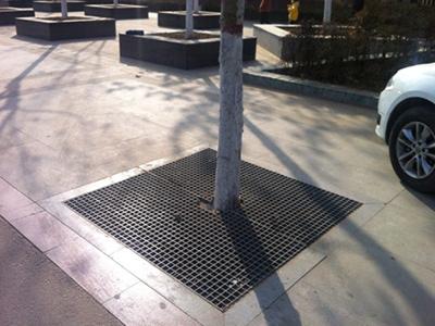 思茅树池盖板